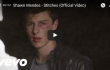 Shawn Mendes - Stitches - Vid Pic